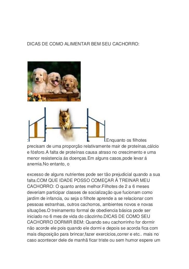 DICAS DE COMO ALIMENTAR BEM SEU CACHORRO::                                        .Enquanto os filhotesprecisam de uma pro...