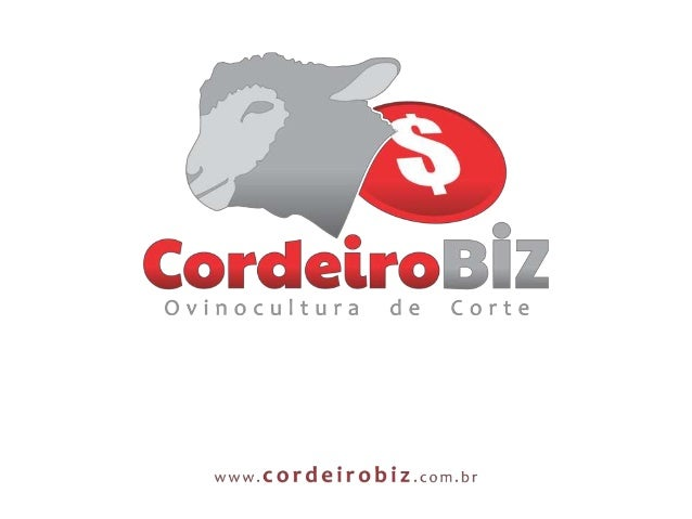 Como aplicar os conceitos deFOCO e ORGANIZAÇÃORafael Fernando dos SantosZootecnista – Unesp BotucatuCoordenador CordeiroBIZ