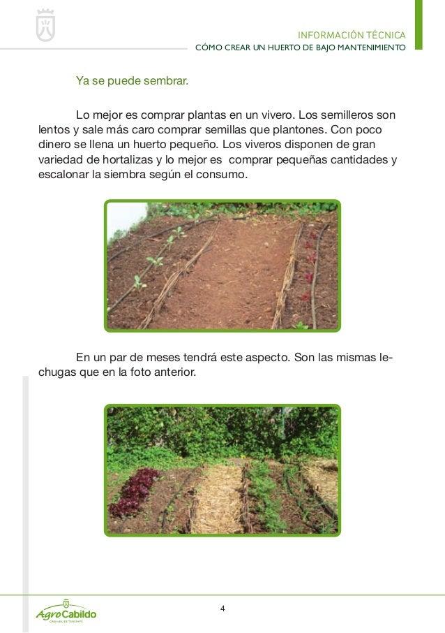 como crear un huerto de bajo mantenimiento