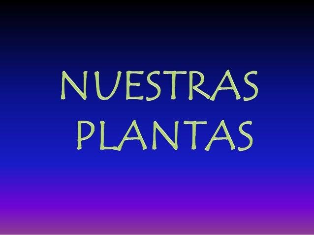 N UESTRAS PLANTAS