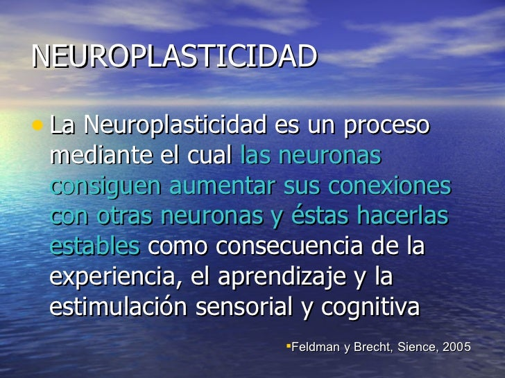 NEUROPLASTICIDAD <ul><li>La Neuroplasticidad es un proceso mediante el cual  las neuronas consiguen aumentar sus conexione...
