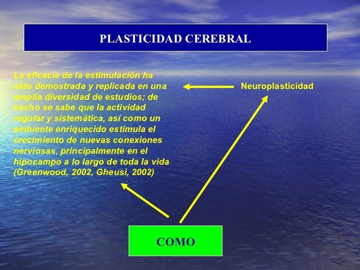 PLASTICIDAD CEREBRAL COMO Neuroplasticidad La eficacia de la estimulación ha sido demostrada y replicada en una amplia div...