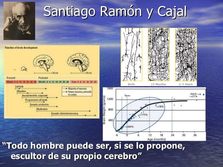 """Santiago Ramón y Cajal <ul><li>"""" Todo hombre puede ser, si se lo propone, escultor de su propio cerebro"""" </li></ul>"""
