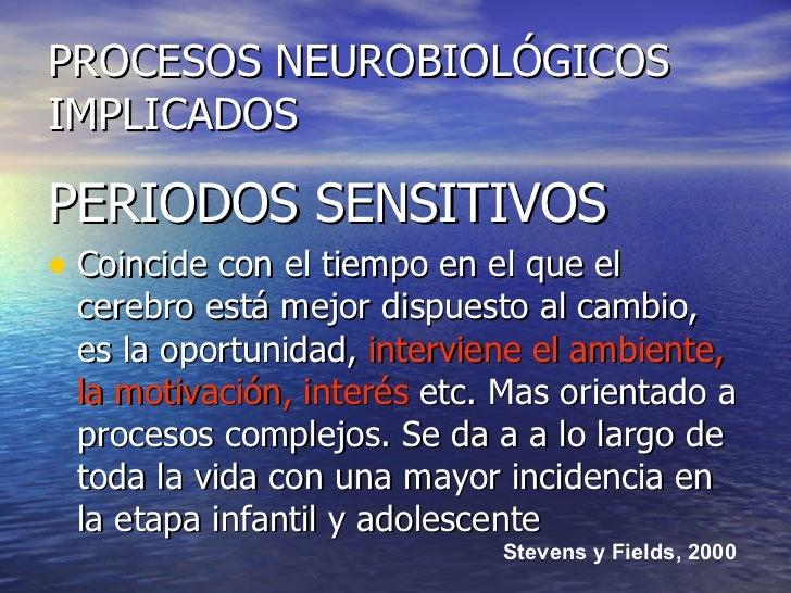 PROCESOS NEUROBIOLÓGICOS IMPLICADOS <ul><li>PERIODOS SENSITIVOS </li></ul><ul><li>Coincide con el tiempo en el que el cere...