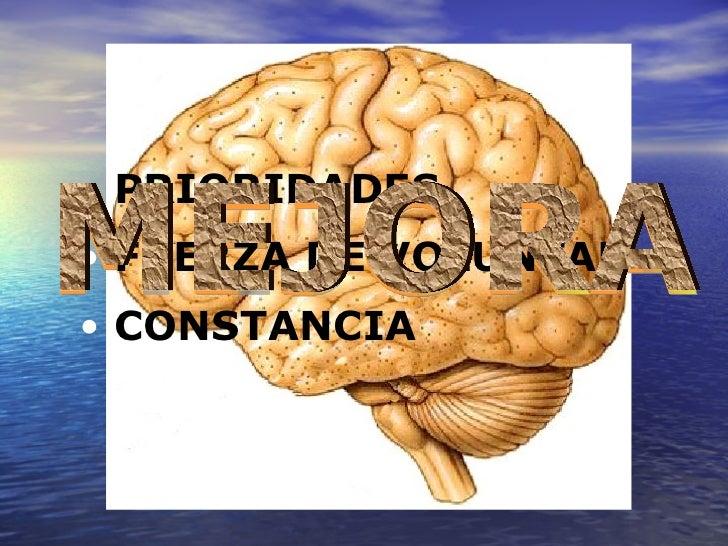 EVOLUCIÓN MEJORA <ul><li>PRIORIDADES </li></ul><ul><li>FUERZA DE VOLUNTAD </li></ul><ul><li>CONSTANCIA </li></ul>MEJORA
