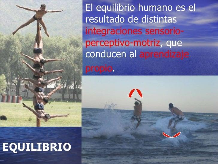 E l equilibrio humano es el resultado de distintas  integraciones sensorio-perceptivo-motriz , que conducen al  aprendizaj...