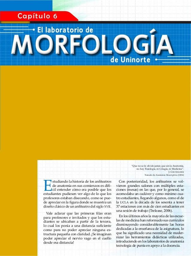 Como estudiar anatomia de Emilio Martínez Marrero