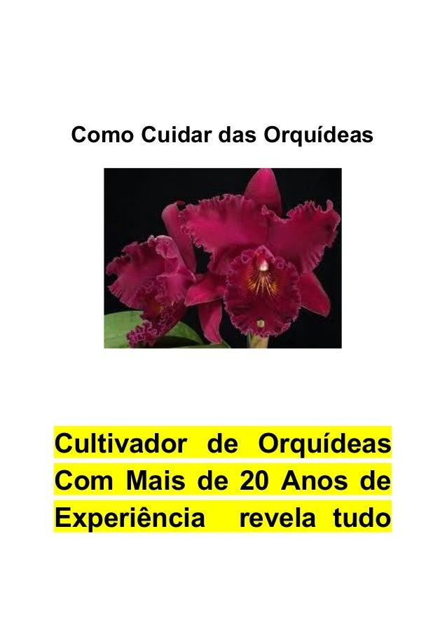 ComoCuidardasOrquídeas     Cultivador de Orquídeas   Com Mais de 20 Anos de      Experiência revela t...