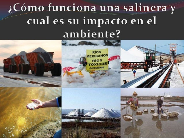 La sal es un producto queconsumimos diariamente;este trabajo esta guiado paraque conozcas y aprecies laforma de obtencion ...