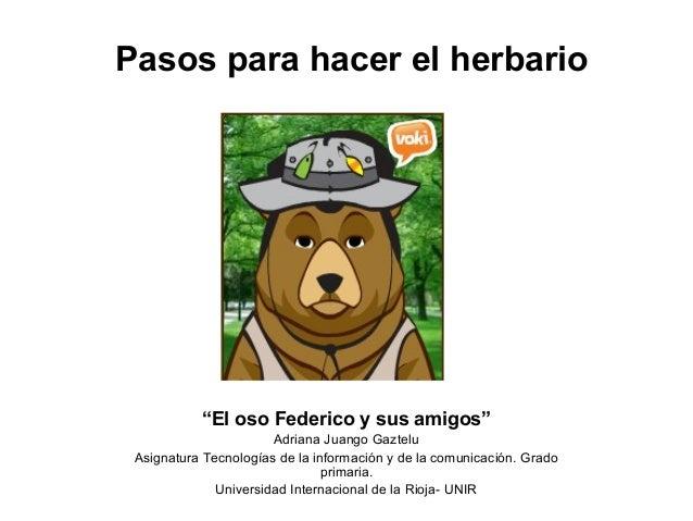 """Pasos para hacer el herbario """"El oso Federico y sus amigos"""" Adriana Juango Gaztelu Asignatura Tecnologías de la informació..."""