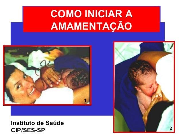 COMO INICIAR A             AMAMENTAÇÃO                     1Instituto de Saúde                              2CIP/SES-SP