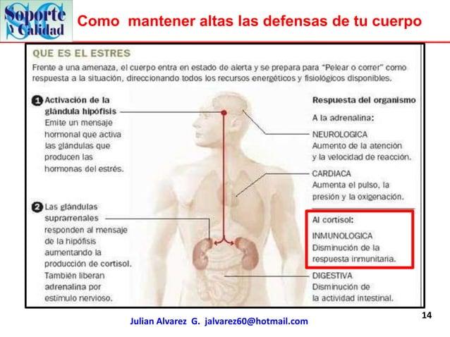 Como mantener altas las defensas de tu cuerpo                                                 14      Julian Alvarez G. ja...
