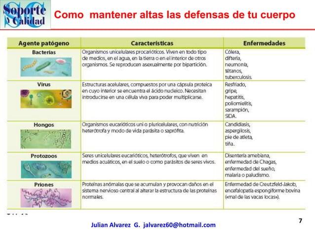 Como mantener altas las defensas de tu cuerpo                                                 7      Julian Alvarez G. jal...