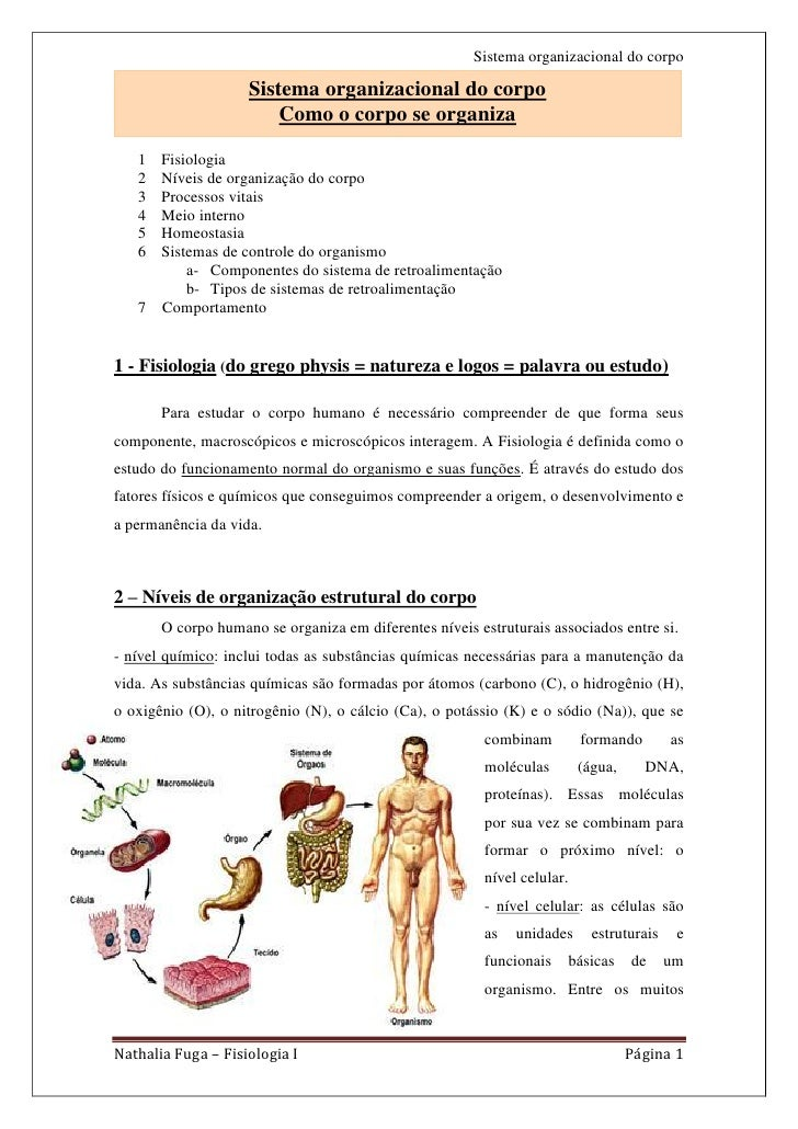 Sistema organizacional do corpo                    Sistema organizacional do corpo                        Como o corpo se ...