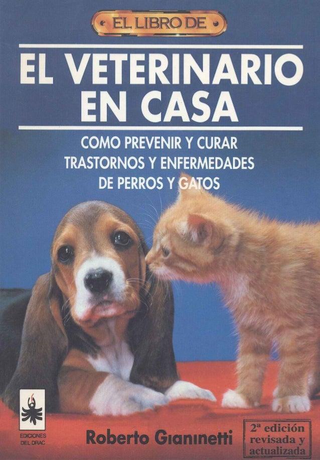 Como prevenir y curar trastornos y enfermedades de perros y gatos
