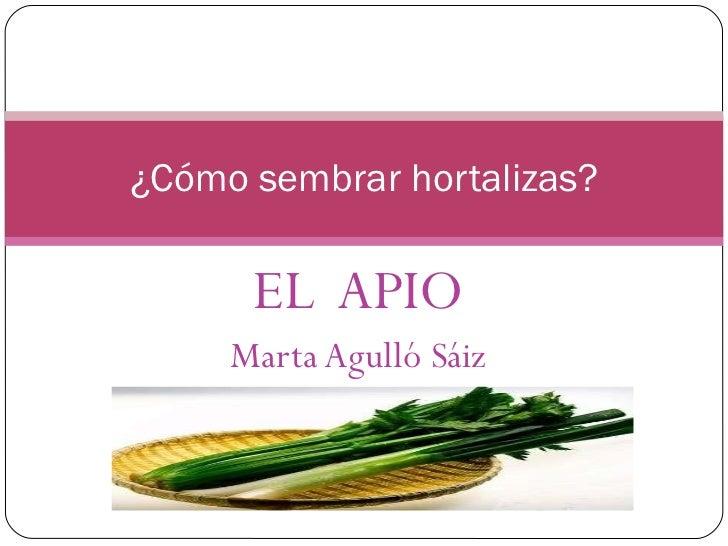 EL  APIO Marta Agulló Sáiz ¿Cómo sembrar hortalizas?