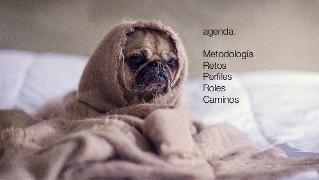 agenda.  Metodología Retos Perfiles Roles Caminos