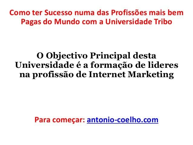 Como ter Sucesso numa das Profissões mais bem  Pagas do Mundo com a Universidade Tribo  O Objectivo Principal desta  Unive...