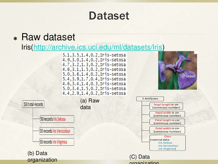Data mining project presentation
