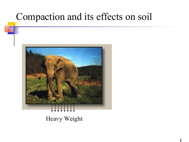 Compaction and its effects on soil       Heavy Weight
