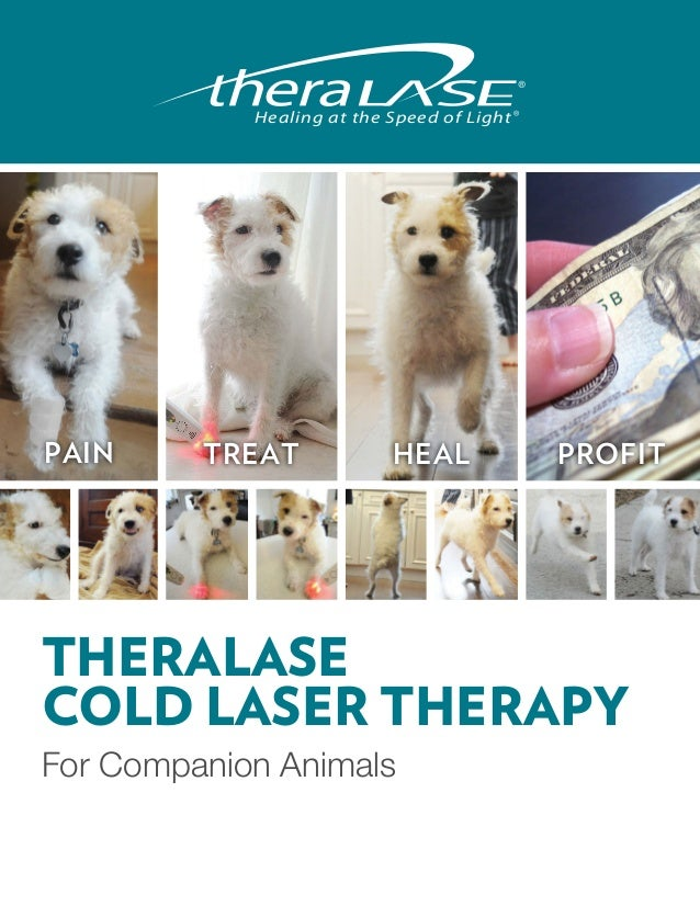 Healing at the Speed of LightPAIN     TREAT             HEAL             PROFITTHERALASECOLD LASER THERAPYFor Companion An...