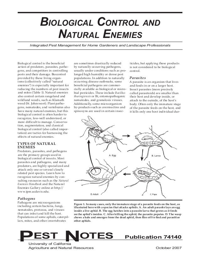 Biological Control and                   Natural Enemies        Integrated Pest Management for Home Gardeners and Landscap...