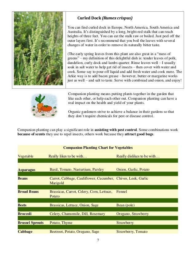 Companion Planting Chart for Vegetables - University of Arkansas