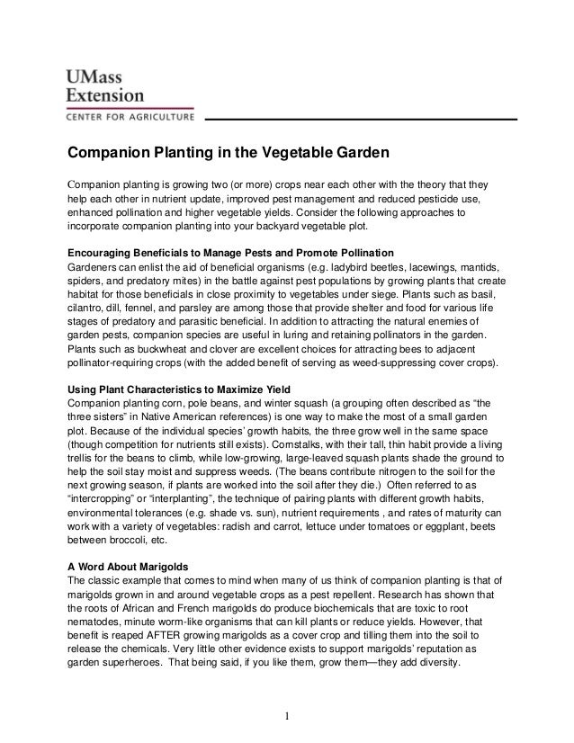 Companion Planting in the Vegetable GardenCompanion planting is growing two (or more) crops near each other with the theor...