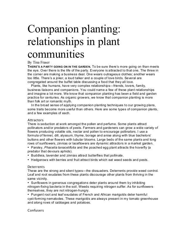 Companion planting:relationships in plantcommunitiesBy Tina FraserTHERE'S A PARTY GOING ON IN THE GARDEN. To be sure there...