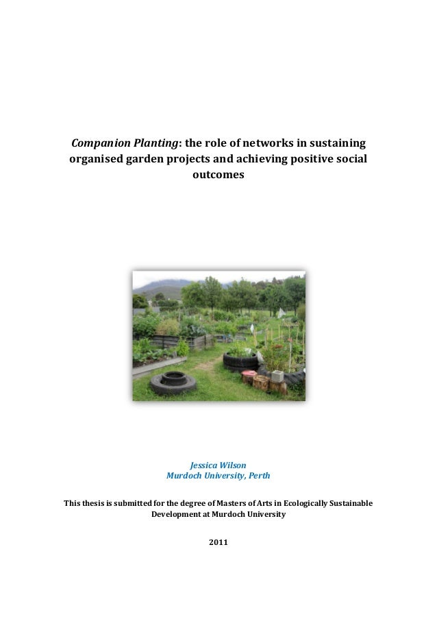 Companion Planting: the role of networks in sustaining organised garden projects and achieving positive social            ...