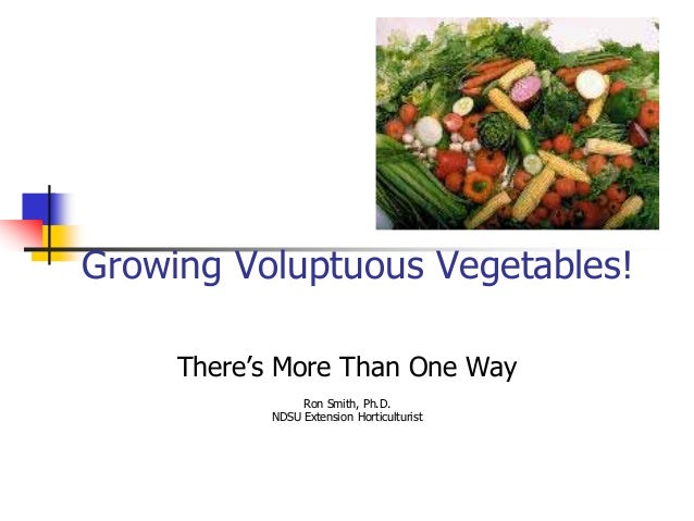 Growing Voluptuous Vegetables!     There's More Than One Way                Ron Smith, Ph.D.           NDSU Extension Hort...