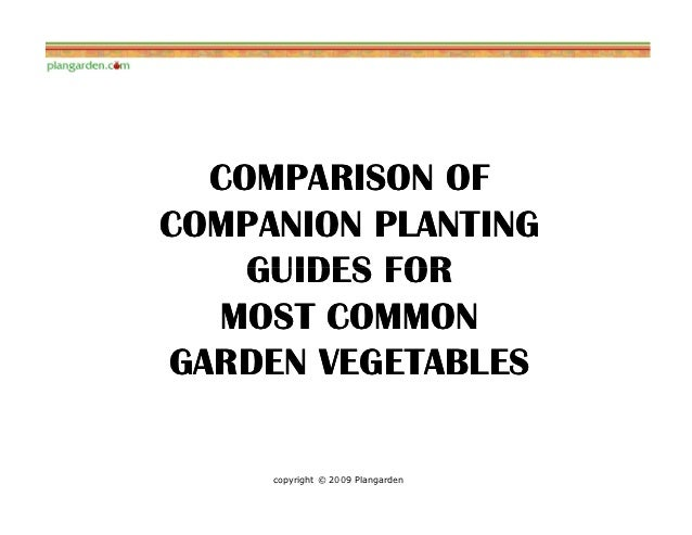 COMPARISON OFCOMPANION PLANTING    GUIDES FOR  MOST COMMONGARDEN VEGETABLES     copyright © 2009 Plangarden