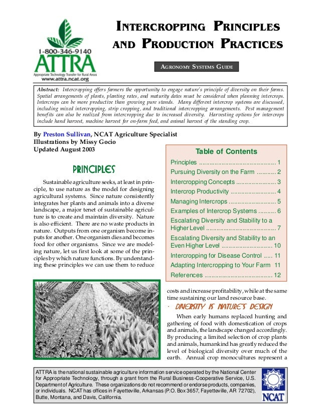 INTERCROPPING PRINCIPLES                                   AND PRODUCTION PRACTICES                                       ...