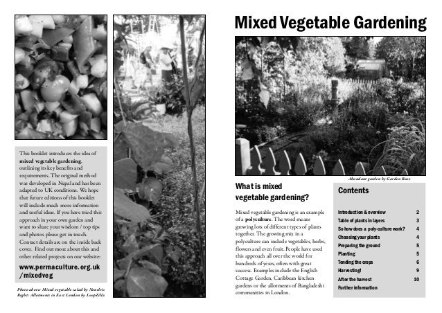 Mixed Vegetable Gardening This booklet introduces the idea of mixed vegetable gardening, outlining its key benefits and re...