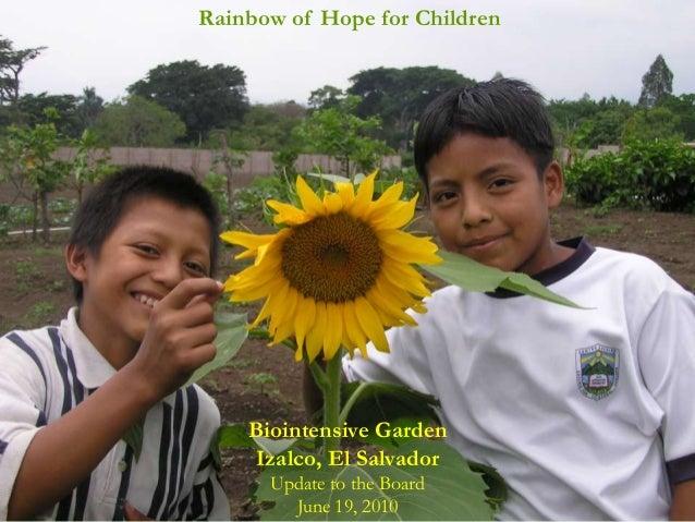 Rainbow of Hope for Children    Biointensive Garden     Izalco, El Salvador      Update to the Board        June 19, 2010