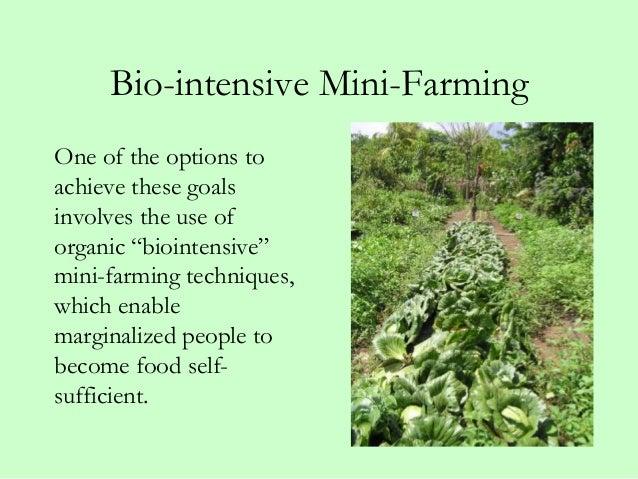 Great Bio Intensive ...