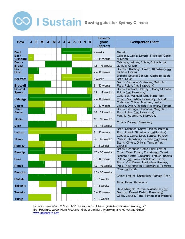 Sowing guide for Sydney Climate                                                           Time to Sow       J F M      A M...