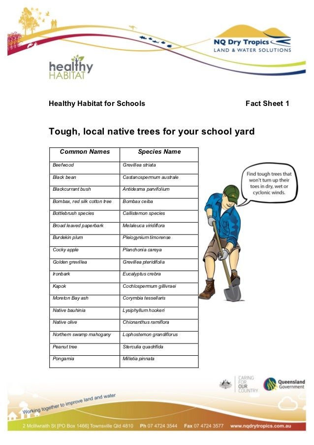 Healthy Habitat for Schools                                Fact Sheet 1Tough, local native trees for your school yard    ...