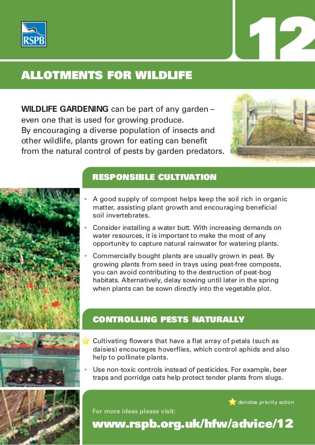 ALLOTMENTS FOR WILDLIFE                                                                    12WILDLIFE GARDENING can be par...