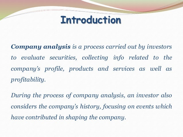 3. Introduction Company Analysis ...