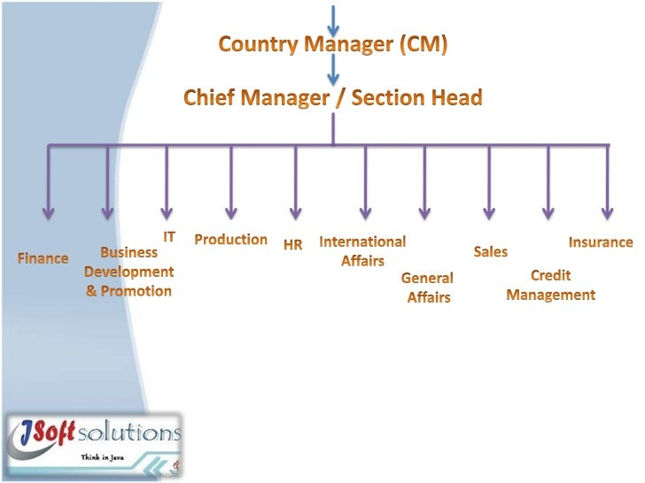 hierarchy of infosys management