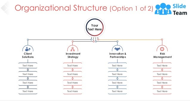 Organizational Structure (Option 1 of 2) 11 Your Text Here Innovation & Partnerships Text Here Text Here Text Here Text He...