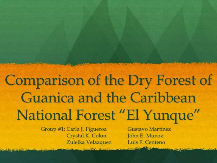 "Comparison of the Dry Forest of  Guanica and the Caribbean National Forest ""El Yunque""     Group #1: Carla J. Figueroa   G..."