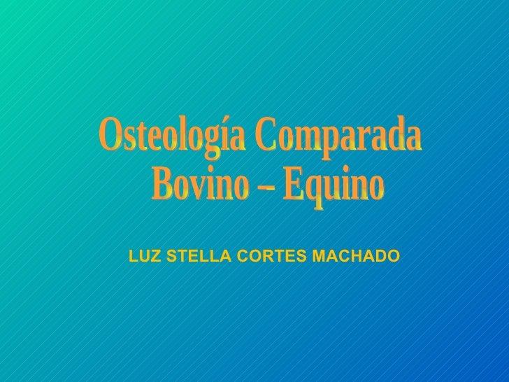 Osteología Comparada Bovino – Equino LUZ STELLA CORTES MACHADO