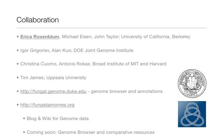 Comparative genomics of the fungal kingdom