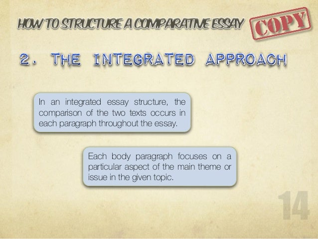 sample comparative essay theme or issue
