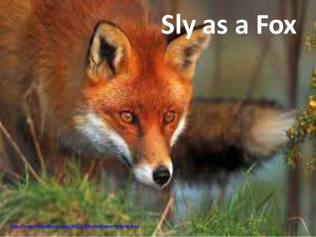 Group of Sly As A Fox
