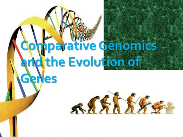 comparative genomics presentation
