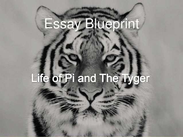The lamb and the tyger compare and contrast essay