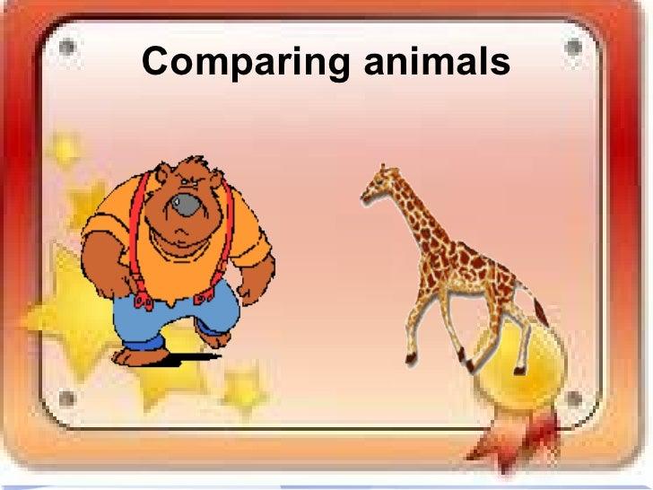 <ul>Comparing animals </ul><ul>Comparing animals </ul>